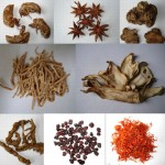 Chinese Medicine for stroke patients