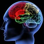The latest developments in stroke medicine: Review of 'stroke' journal